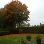 Herbst - Garten 02 LUMIX - M-Modus / Belichtung 10/600 s Blende f / 5.6 Brennweite 4,3mm ISO-Empfindlichkeit 200
